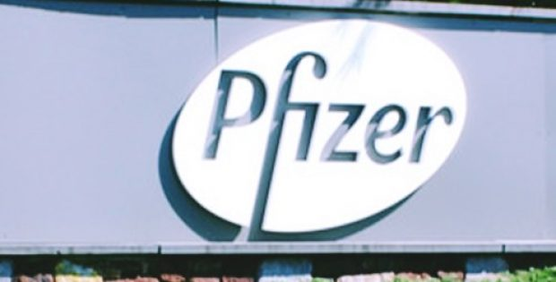 pfizer brings development dmd candidate domagrozuma halt