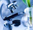 Denali Therapeutics & SIRION Biotech