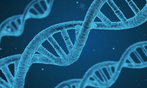 Sangamo & Pfizer unveil data from gene therapy for severe hemophilia A